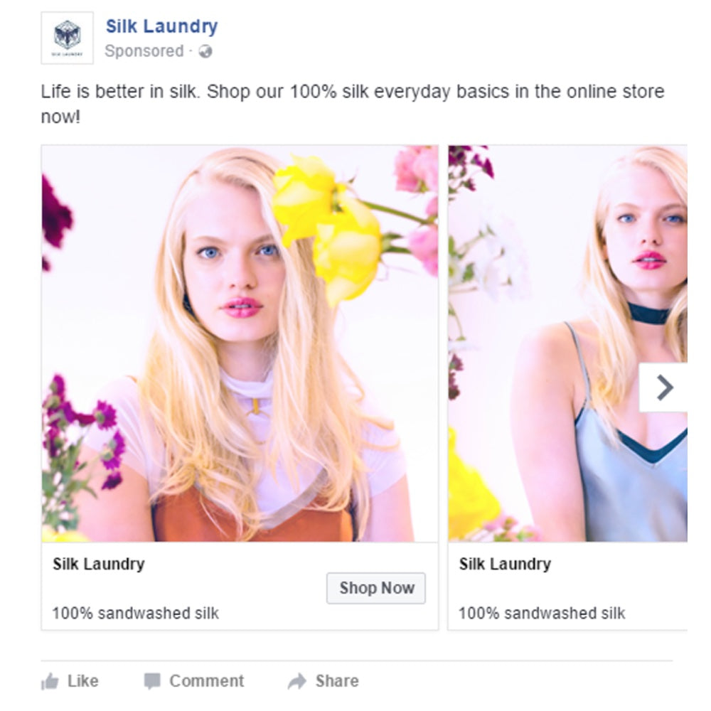 Successful Marketing Campaigns: Silk Laundry