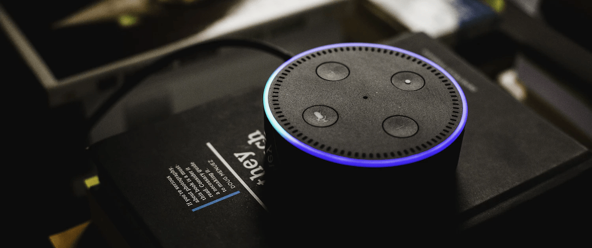 Designing for Voice Search