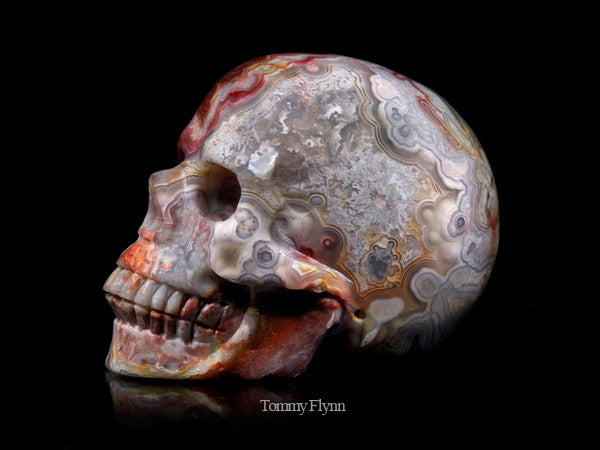 Orange Crazy Lace Agate Skull
