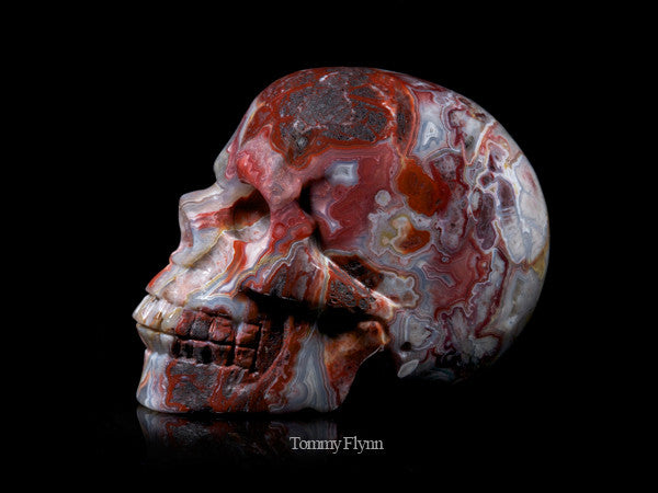 Red Crazy Lace Agate Skull