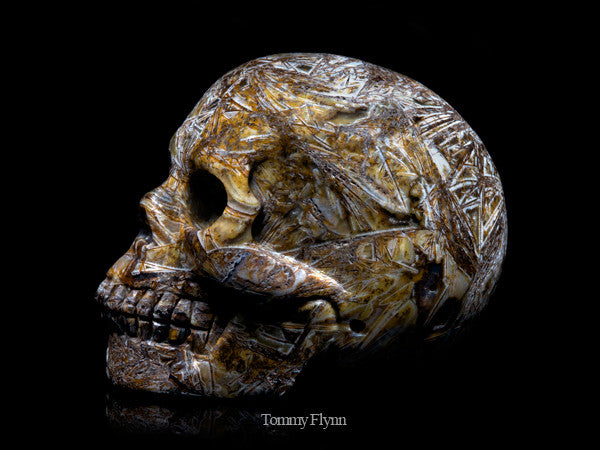 Tree Leaves Agate Skull