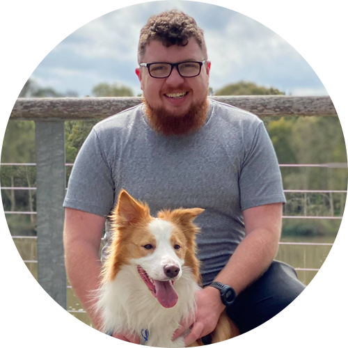 a smiling bearded man with a border collie