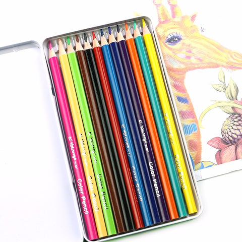 YALONG Color 12 Pencils in Tin Pack (YL817198-12)
