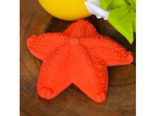 Load image into Gallery viewer, Lanco Asteroida Starfish Teether & Bath Toy - Meats And Eats