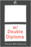 View all Illinois frames for double degree