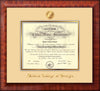 Image of Medical College of Georgia Diploma Frame - Mezzo Gloss - w/Embossed MCG Seal & Name - Cream on Gold mat