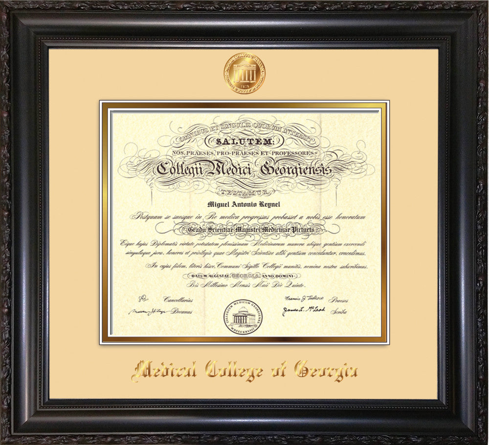 Medical College of Georgia Diploma Frame-Vintage Scoop-Seal-Cream ...