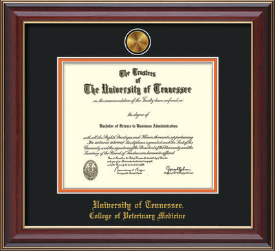 Image of University of Tennessee Diploma Frame - Cherry Lacquer - w/24k Gold Plated Medallion College of Veterinary Medicine Name Embossing - Black on Orange Mat
