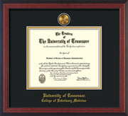 Image of University of Tennessee Diploma Frame - Cherry Reverse - w/24k Gold Plated Medallion College of Veterinary Medicine Name Embossing - Black on Gold Mat