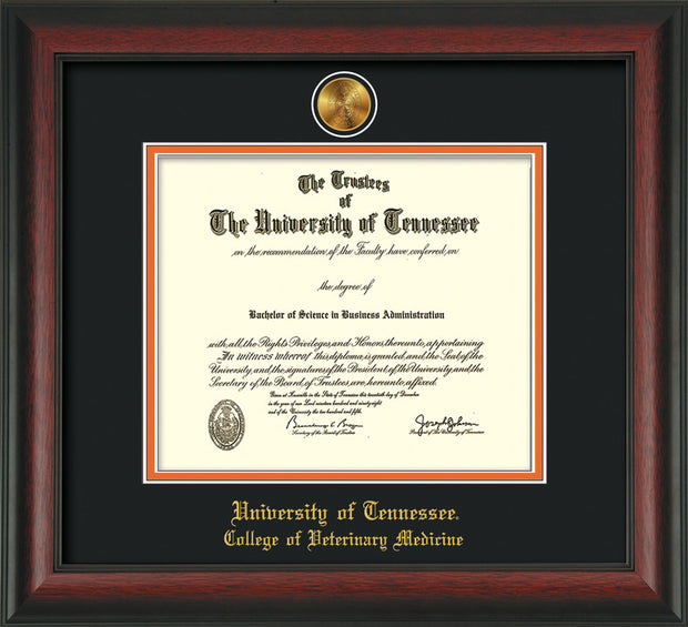 Image of University of Tennessee Diploma Frame - Rosewood - w/24k Gold Plated Medallion College of Veterinary Medicine Name Embossing - Black on Orange Mat