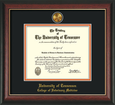 Image of University of Tennessee Diploma Frame - Rosewood w/Gold Lip - w/24k Gold Plated Medallion College of Veterinary Medicine Name Embossing - Black on Orange Mat