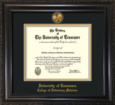 Image of University of Tennessee Diploma Frame - Vintage Black Scoop - w/24k Gold Plated Medallion College of Veterinary Medicine Name Embossing - Black on Gold Mat