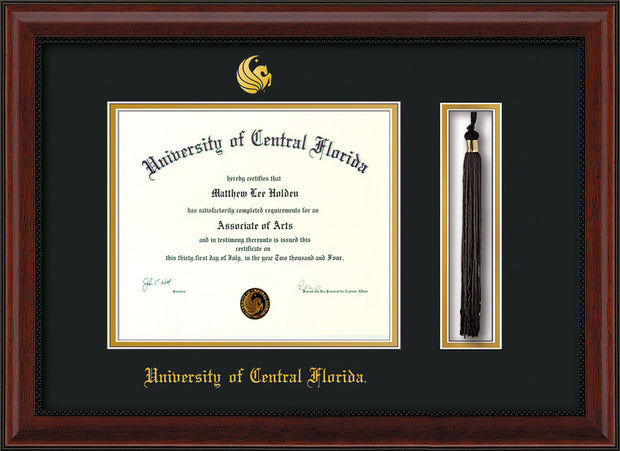 University Of Central Florida Page 3 Official Diploma