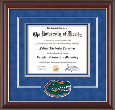 Image of University of Florida Diploma Frame - Cherry Lacquer - 3D Laser UF Gator Head Logo Cutout - Royal Blue Suede on Orange on Royal Blue mat