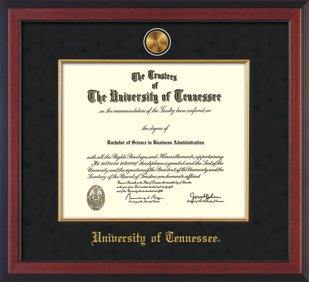 University Of Tennessee Medallion Fillet Official