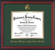 Image of Abraham Baldwin Agricultural College Diploma Frame - Cherry Reverse - w/Embossed ABAC Seal & Name - Green on Gold mat