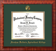 Image of Abraham Baldwin Agricultural College Diploma Frame - Mezzo Gloss - w/Embossed ABAC Seal & Name - Green on Gold mat