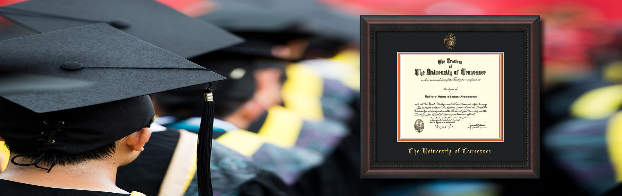 Official Diploma Frames | Professional Framing Company