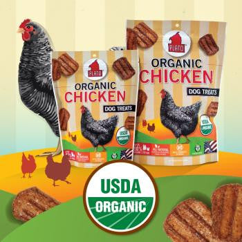Organic Chicken Dog Treats 16 oz Bag