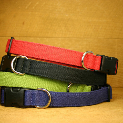 The Back to Basics Dog Collar Medium