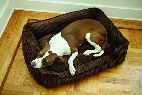 Lounge Dog Bed Deluxe Fabrics