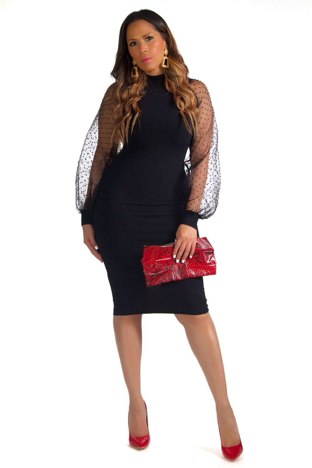Bethany Mock Neck Mesh Long Sleeves Midi Dress in Black