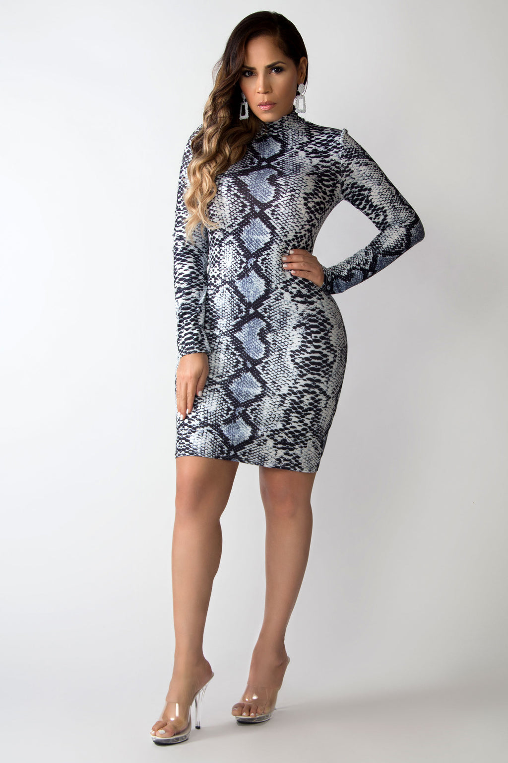 Madeline Mock Neck Snake Print Long Sleeves Bodycon Dress
