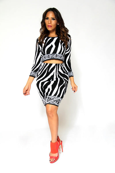 Zebra Print Knit Quarter Sleeve Crop Top And High Waist Skirt Sexy Set - MY SEXY STYLES  - 3