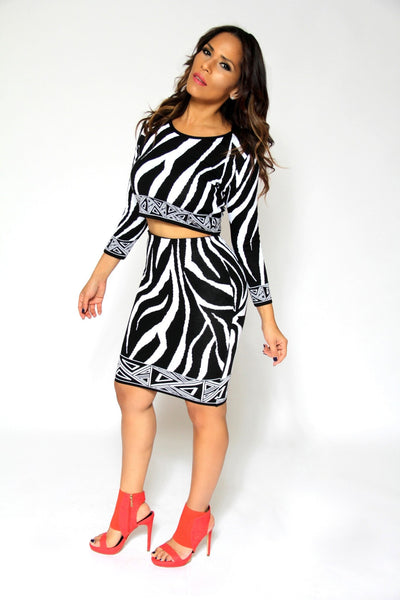 Zebra Print Knit Quarter Sleeve Crop Top And High Waist Skirt Sexy Set - MY SEXY STYLES  - 4