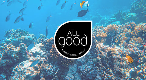Doing Good Works in the World - All Good Products
