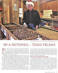 Holiday Pecan article