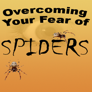 Fear of Spiders - Hypnotherapy mp3 Audio