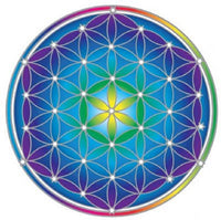 Flower of Life Mandala Sunseal
