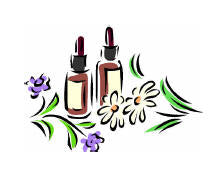Bach Flower Remedies Correspondence Course