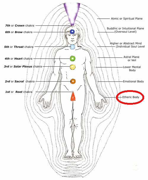The Human Etheric Body