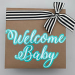 Welcome Baby Boy Box - Hat, Gown, Lovie