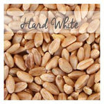 Organic, Prairie Gold Hard White Wheat Berries, 5 LB Bag