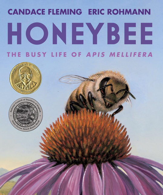 Honeybee Picture Book by Candace Fleming
