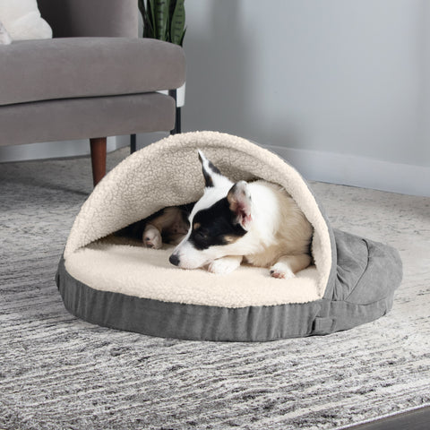 small dog on snuggery furhaven pet products bed
