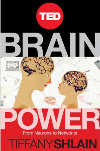 BRAIN POWER: From Neurons to Networks (Paperback)