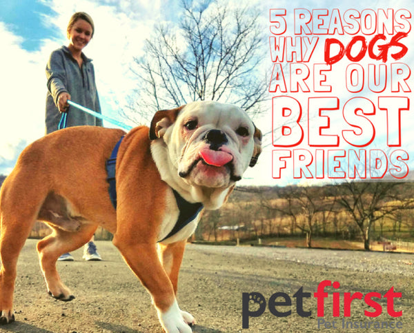 5 Reasons Why Dogs are Man's Best Friend!
