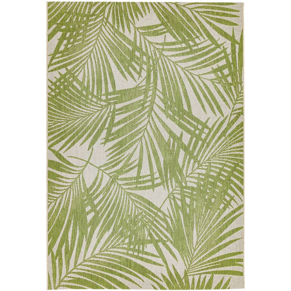 Asiatic Patio Green Palm 15