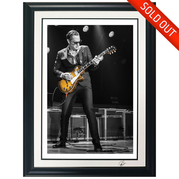 "#34 ""Spot"" JOE BONAMASSA Collectible Litho (FRAMED - USA ONLY)"
