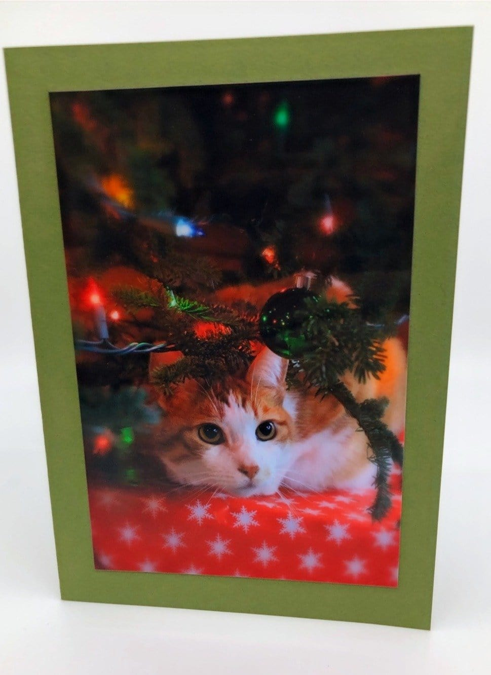 Christmas Cards (set of 5)