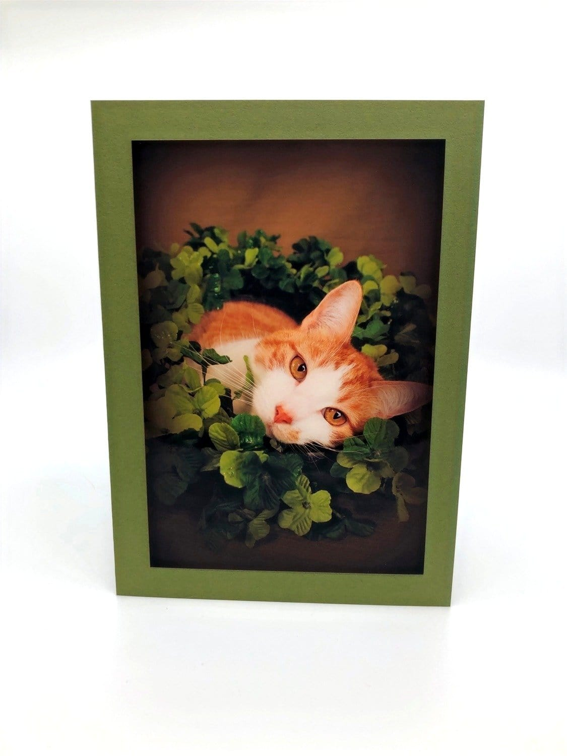 Saint Patrick's Day Cards Blank ( set of 3)