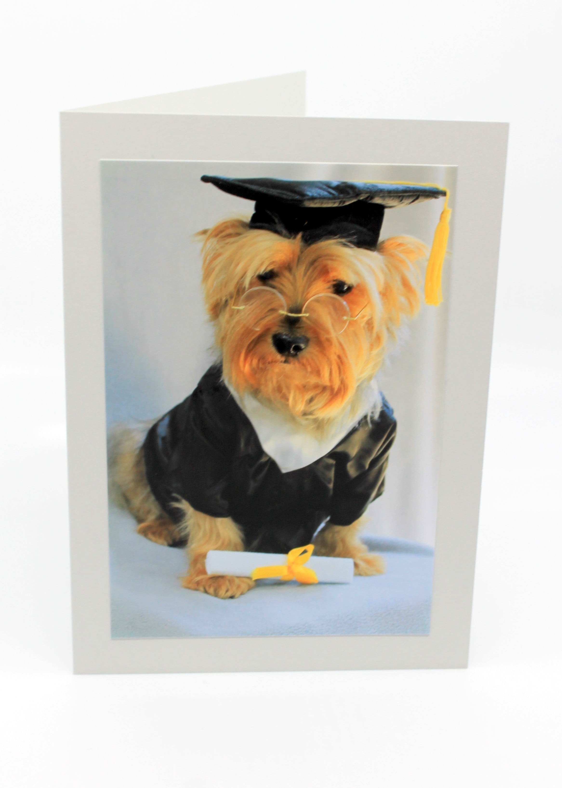 Graduation Cards Blank (set of 4)
