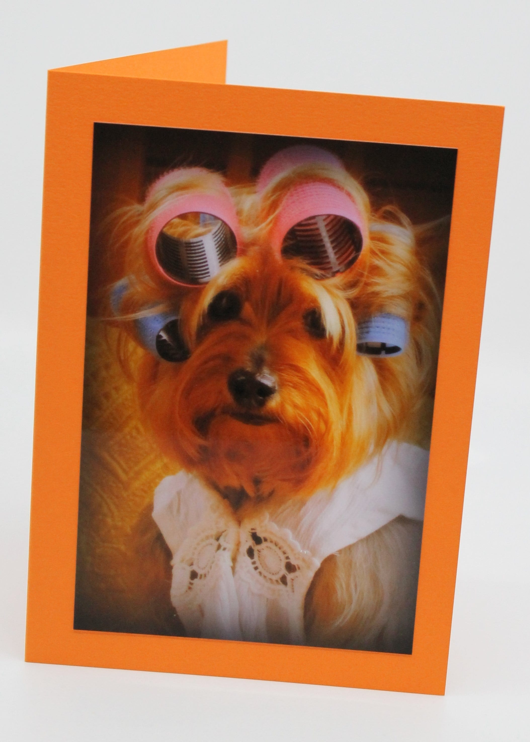 Fun Yorkie Note Cards Blank (Set of 4)