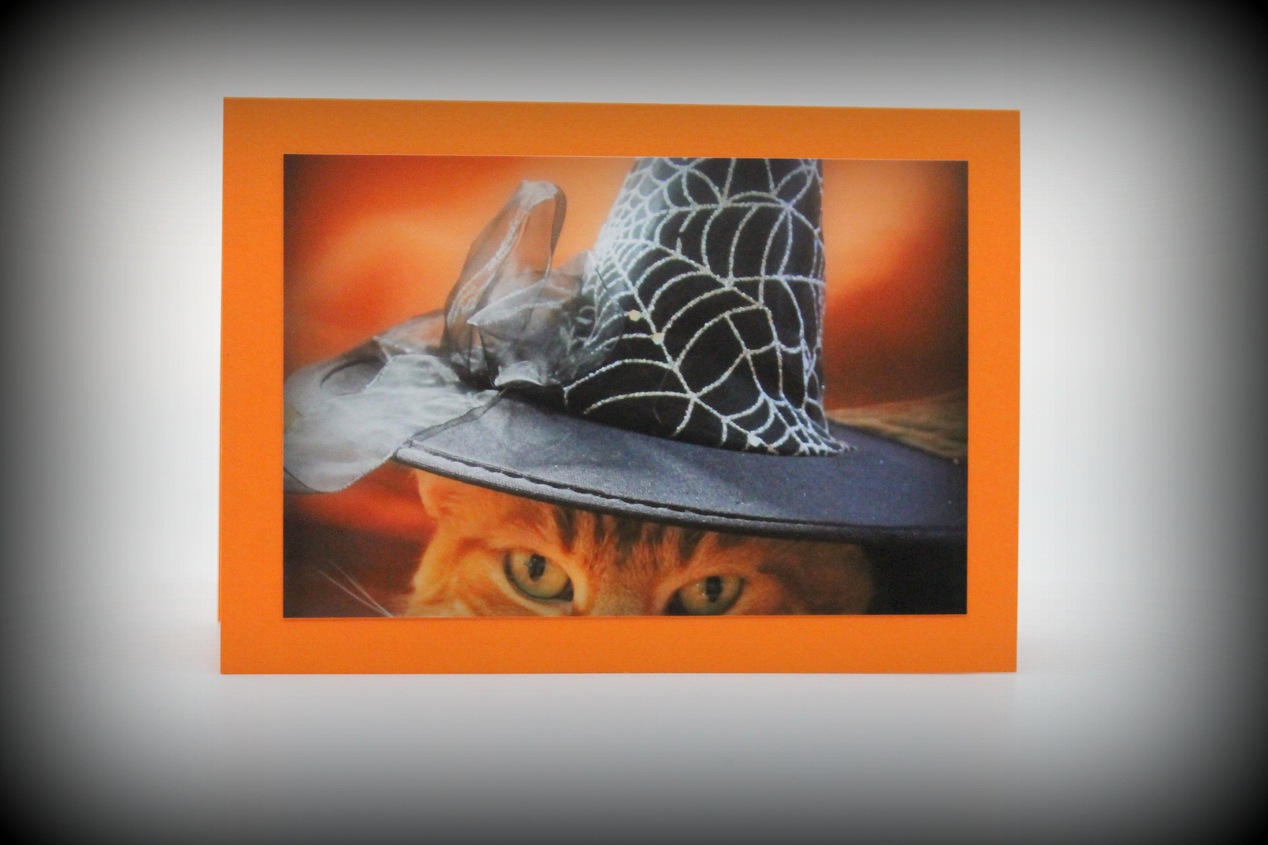 Halloween Cards Blank (set of 3)