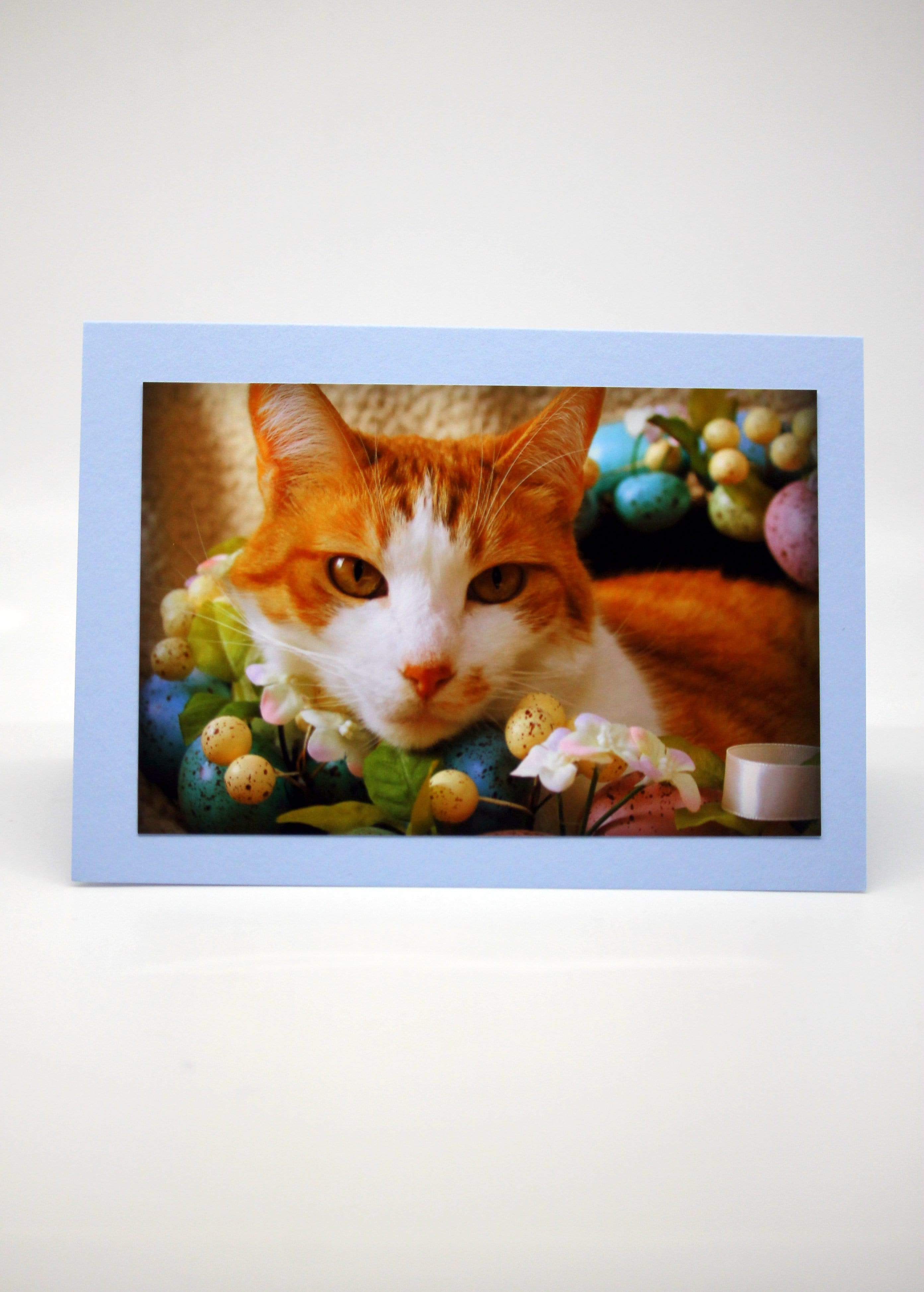 Easter Cards Blank (set of 5)