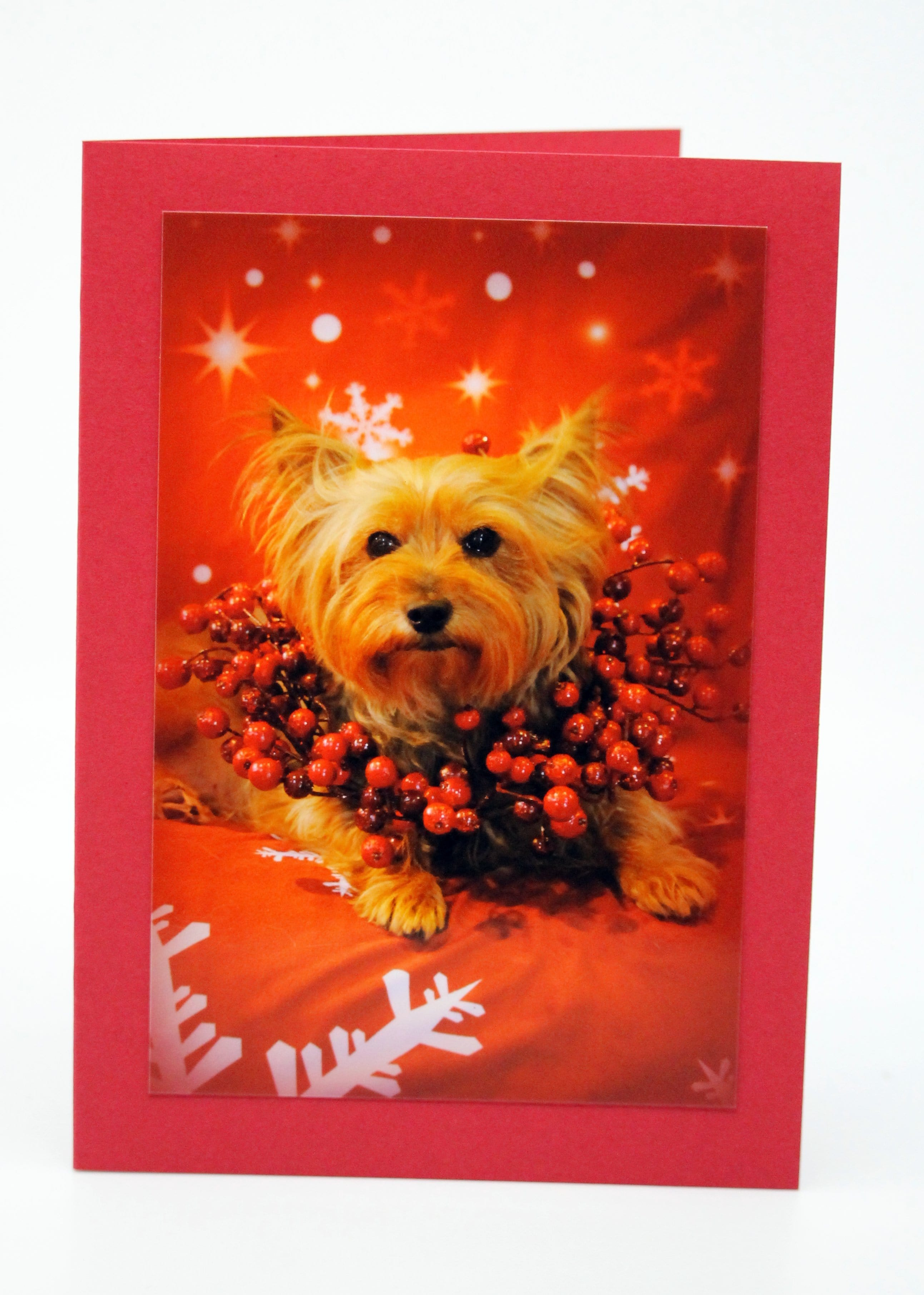 Christmas Cards Blank (set of 5)